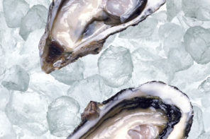 Fresh opened oyster on ice